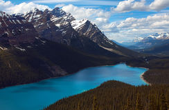 Peyto Lake. Located in Banff National Park, Alberta, Canada Royalty Free Stock Photos
