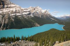 Peyto Lake royaltyfri foto