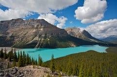 Peyto Lake. Beautiful Peyto Lake and Mistaya Valley in Banff National Park, Alberta, Canada Stock Image