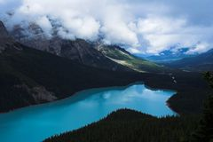 Peyto Lake. In Alberta Rockie Mountains, beside the icefield highway Stock Images