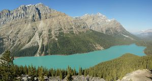 Peyto_lake photos libres de droits