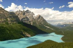 Peyto lake. In the Rocky Mountains, Canada Royalty Free Stock Images