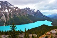 Peyto Lake. Banff National Park, Canada Royalty Free Stock Photos