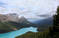 Peyto Lake Royalty Free Stock Images