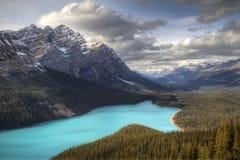 Peyto Lake Royalty Free Stock Images