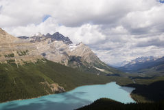 Peyto Lake Royalty Free Stock Photo