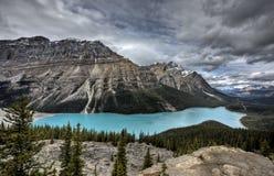 Peyto Lake Alberta Canada Stock Image