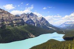 Peyto lake in Alberta Royalty Free Stock Images