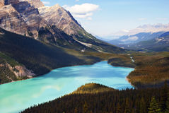 Peyto Lake Banff Royalty Free Stock Photos