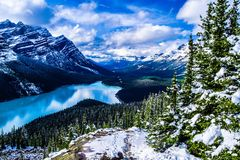 Peyto Lake. Banff National Park Stock Photo