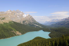 Peyto Lake, Banff National Park Royalty Free Stock Images