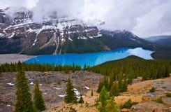 Peyto Lake in Banff National Park, Alberta stock images