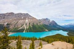 Peyto Lake- Banff National Park- Alberta- Canada. Royalty Free Stock Images