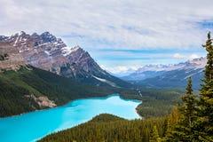 Peyto Lake- Banff National Park- Alberta- Canada. Stock Photos