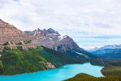 Peyto Lake- Banff National Park- Alberta- Canada. Royalty Free Stock Photo