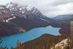 Peyto Lake, Banff National Park, Alberta, Canada. Stock Photography
