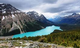 Peyto lake Stock Photos