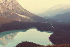 Peyto lake Stock Images