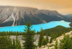 Peyto lake, Banff National park, Canada Royalty Free Stock Images