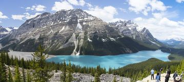 Peyto Lake in Banff National Park, Canada Royalty Free Stock Photos