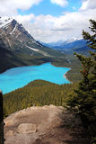 Peyto Lake in Banff National Park, Canada Stock Images