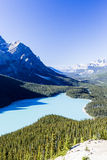 Peyto Lake, Banff National Park, Rocky Mountains, Alberta, Canad. Peyto Lake is a glacier-fed lake located in Banff National Park in the Canadian Rockies. The Royalty Free Stock Image