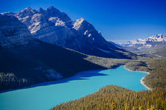 Peyto Lake, Banff National Park, Rocky Mountains, Alberta, Canad. Peyto Lake is a glacier-fed lake located in Banff National Park in the Canadian Rockies. The stock image