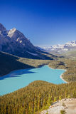 Peyto Lake, Banff National Park, Rocky Mountains, Alberta, Canad. Peyto Lake is a glacier-fed lake located in Banff National Park in the Canadian Rockies. The Stock Photo