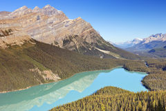 Peyto Lake, Banff NP, Canada on a sunny day Stock Photos