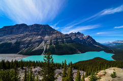 Peyto Lake. In the British Columbia Rocky Mountains Royalty Free Stock Photography