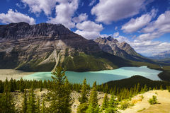 Peyto Lake Royalty Free Stock Photography