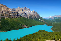 Peyto Lake of Canada. Magnificent blue waters of Peyto Lake of Banff National Park in Canada Stock Photo