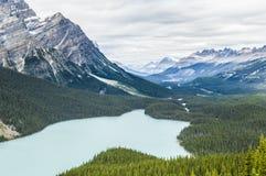 Peyto Lake, Canada royalty free stock photography