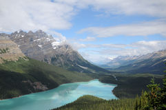 Peyto Lake Canadian Rockies Stock Images