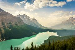 Peyto Lake in Canadian Rockies Mountains, Alberta, Canada Stock Photos
