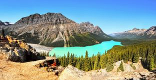Canada, Peyto Lake Mountains Landscape royalty free stock photography