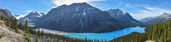 Peyto Lake. I visited during a trip to Jasper for me is the most beautiful lake I've seen Royalty Free Stock Image