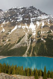 Peyto lake and mountains Royalty Free Stock Image