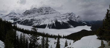 Peyto Lake Panorama Royalty Free Stock Images