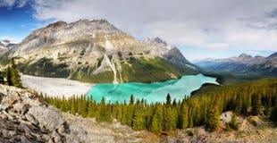 Peyto Lake, Panorama, National Park, Canada Stock Image