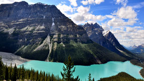 Peyto Lake in Rocky Mountains Canada. Panoramic view of a suggestive Canadian Rocky Mountains scenery with alpine lake and mountains Stock Photography