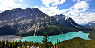 Peyto Lake in Rocky Mountains Canada Royalty Free Stock Photography
