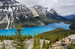 Peyto lake, Rocky Mountains (Canada) Royalty Free Stock Images