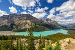 Peyto Lake Royalty Free Stock Photography