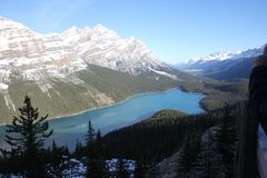 Peyto Lake view stock images