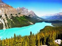Peyto nationalpark för sjö, Banff, kanadensiska steniga berg Arkivbild