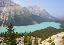 Peyto See in Banff, Alberta, UNESCO-Erbe Stockfotos