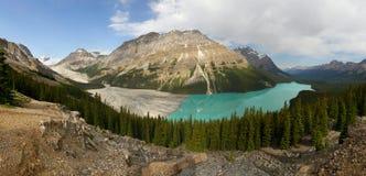 Peyto sjö, Alberta Arkivbild