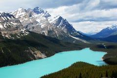 Peyto sjö, kanadensiska steniga berg, Kanada Arkivfoto