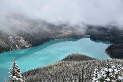 Peyto sjöBanff nationalpark Royaltyfri Foto